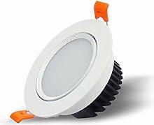 Wlnnes Led Downlight Aluminum Round Ceiling Lamp