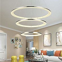 WLP-WF Dimmable Led Pendant Lamp Stainless Steel