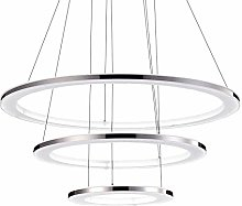 WLP-WF Dimmable Led Pendant Lamps Stainless Steel