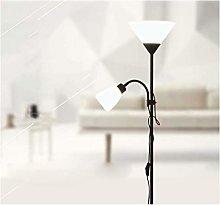 WLP-WF Modern Floor Lamp 2 Lights Night Floor Lamp