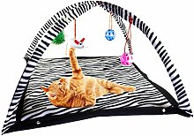 WPCASE Cat Toy Kitten Toy Cat Interactive Toy Cat