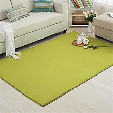 WQ-BBB Carpet bedroom rug,Super soft green