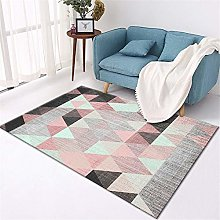 WQ-BBB Rug Dosen'T Shed home design Carpet