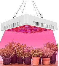 WQY 3000W LED Grow Lights Lamp Panel Hydroponic