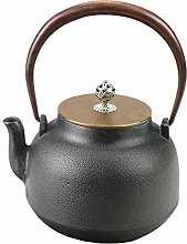 WTDlove Iron Pot cast Iron Pot Antique Japanese