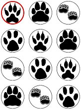 "x12 2"" Animal Footprints Cup Cake Toppers"