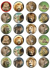 "X24 1.5"" Lion Safari Animal Birthday Cup Cake"