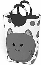 XCNGG Funny Gray Ball Cute Cat Kitten Dirty