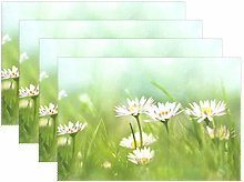 XiangHeFu Placemats Daisy Flowers 12x18 inch Heat