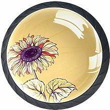 Xingruyun Cabinet knobs 4 pack Elegant Flowers