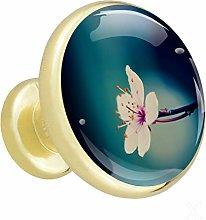 Xingruyun Cabinet knobs 4 pack Flower wardrobe