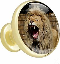 Xingruyun Cabinet knobs and pulls Animal Funny