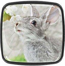 Xingruyun Cabinet knobs and pulls Cute Rabbit Gray