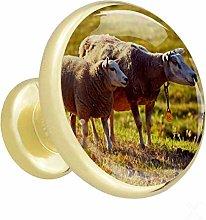 Xingruyun Drawer pulls gold Animal Sheep cabinet