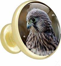 Xingruyun Kitchen cabinet knobs gold Eagle