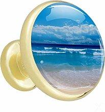 Xingruyun Wardrobe knobs Beach dresser knobs gold
