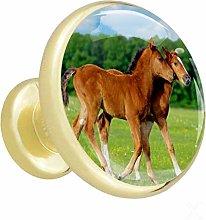 Xingruyun Wardrobe knobs Brown horse dresser knobs