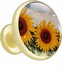 Xingruyun Wardrobe knobs sunflower dresser knobs