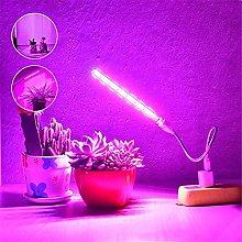 xldiannaojyb 1pcs 10W Led Grow Light USB Portable