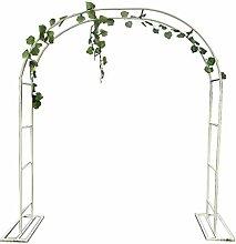 XLOO Arch forClimbing Plants,Garden Arch,Garden