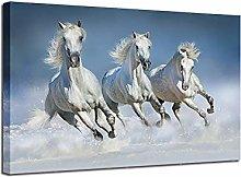 XUSANSHI Poster Art Picture Print White horse