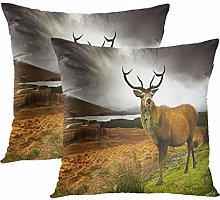 Y·JIANG Landscape Cushion Cover, Scottish Red