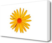 Yellow Daisy Face Flowers Canvas Print Wall Art
