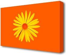 Yellow Daisy Face On Orange Flowers Canvas Print