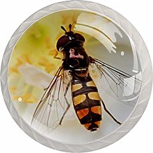 Yellow Flower Insect 4 Pieces Crystal Glass