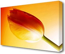 Yellow On Yellow Tulip Flowers Canvas Print Wall