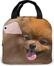 Yellow Pomeranian Lunch Bag Tote Bag Lunch Box