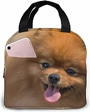 Yellow Pomeranian Mountain Lunch Bag Insulated