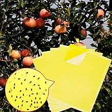 Yellow Sticky Traps(30 Pack), Dual-Sided Fly Traps