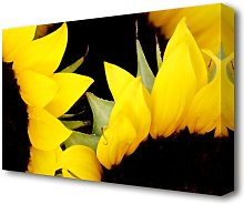 Yellow Sunflower Twins Close-Up Flowers Canvas