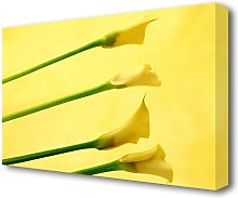 Yellow Trumpet Flowers Flowers Canvas Print Wall