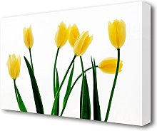 Yellow Tulip March Flowers Canvas Print Wall Art