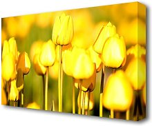Yellow Tulips In The Garden Flowers Canvas Print