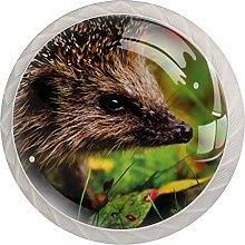 Yitian 4 Pack Cabinet Knobs Hedgehog Child