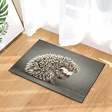 YjkAJuQeP Wild Animal Hedgehog.Door Mat Rug
