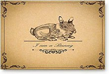 YnimioHOB Classical Rabbit Pattern Door Mats