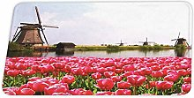 YnimioHOB Windmills with Red Tulips in Amsterdam