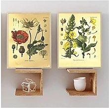 YQQICC Vintage Botany Poster Print Wall Art Canvas