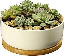 YUNHOME Plant Pot Succulent Flower Pot Cactus Pot