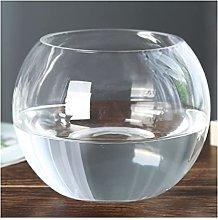 Yyqx vase Clear Glass Vase Hydroponic Plant
