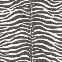 Zebra Print Chrome Black and White Animal Print