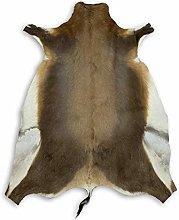 Zerimar African Blesbok Rug Natural Premium