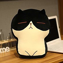 ZHANG Creative Personality Custom Plush Pillow