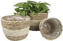 ZHENAO Straw Flower Basket Plant Flower Pot Desk