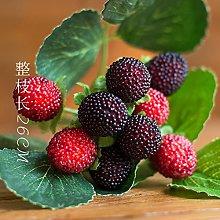 ZHUDJ High Artificial Raspberry Raspberries Wild