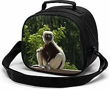 Zoboomafoo Lemur Zoboo Lunch Bag for Boys and